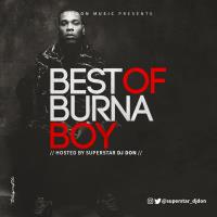 Best of Burna Boy Mixtape - Dj Don
