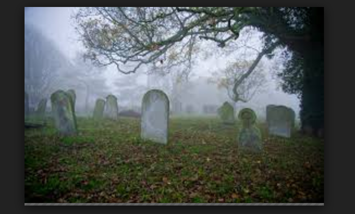 Why I visit grave yards at night to dig up corpses