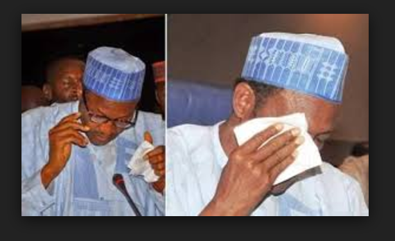 Photo of Presidency reveals how evil politicians traveled to India to pray for Buhari's death, consulting soothsayers