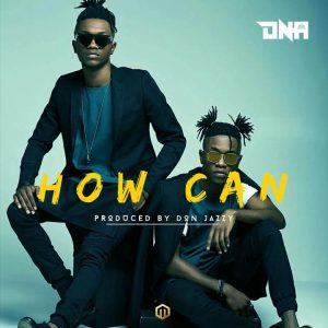 How Can – DNA Twins @itz_dna (Video)