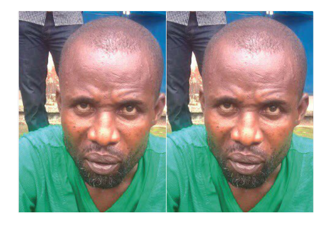I duped her of N6m because she is a greedy thief - Herbalist