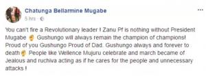 Robert Mugabe's son