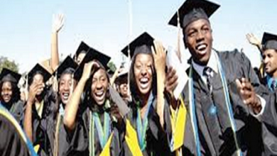 Photo of Breaking: 4 Ph'Ds, 200 Masters Degree Holders Jostle for FG's N20,000 Monthly Jobs