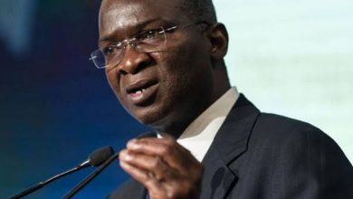 NAIJA.FM WOW! See How Fashola Plans to Connect Nigeria to The Rest of Africa