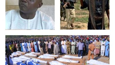 NAIJA.FM Garba Shehu Reacts To Backlash Over Comment On Borno Farmers Killing