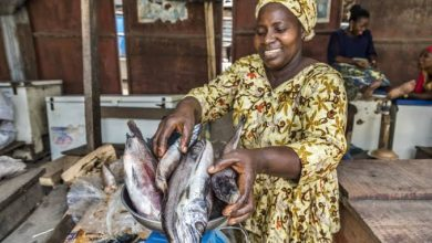 Ban on importation of fish