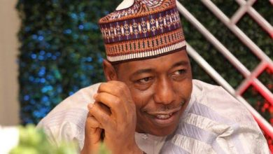 NAIJA.FM There Are Christians In Boko Haram - Gov Zulum Boko Haram