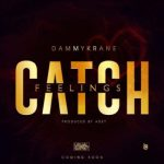 Catch Feelings - Dammy Krane