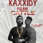 Fulani Cattle - Kaxxidy