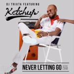 Never Letting Go - DJ Trixta ft Ketchup