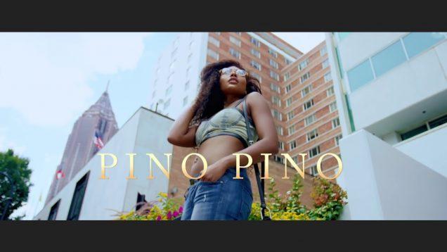 Pino-Pino-Phyno